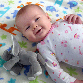 featured-baby-elephant
